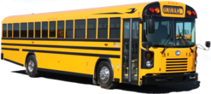School buses and minibuses